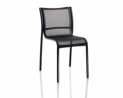 Paso Doble Dining Chair