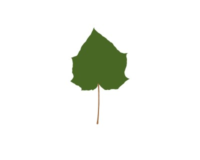 Leaves Art