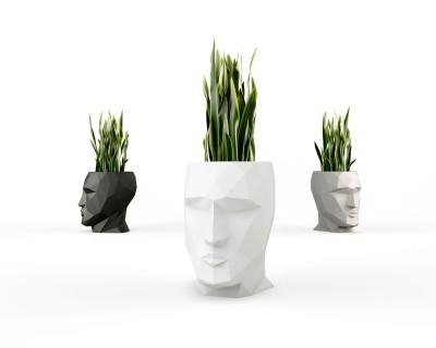 Adan Planter